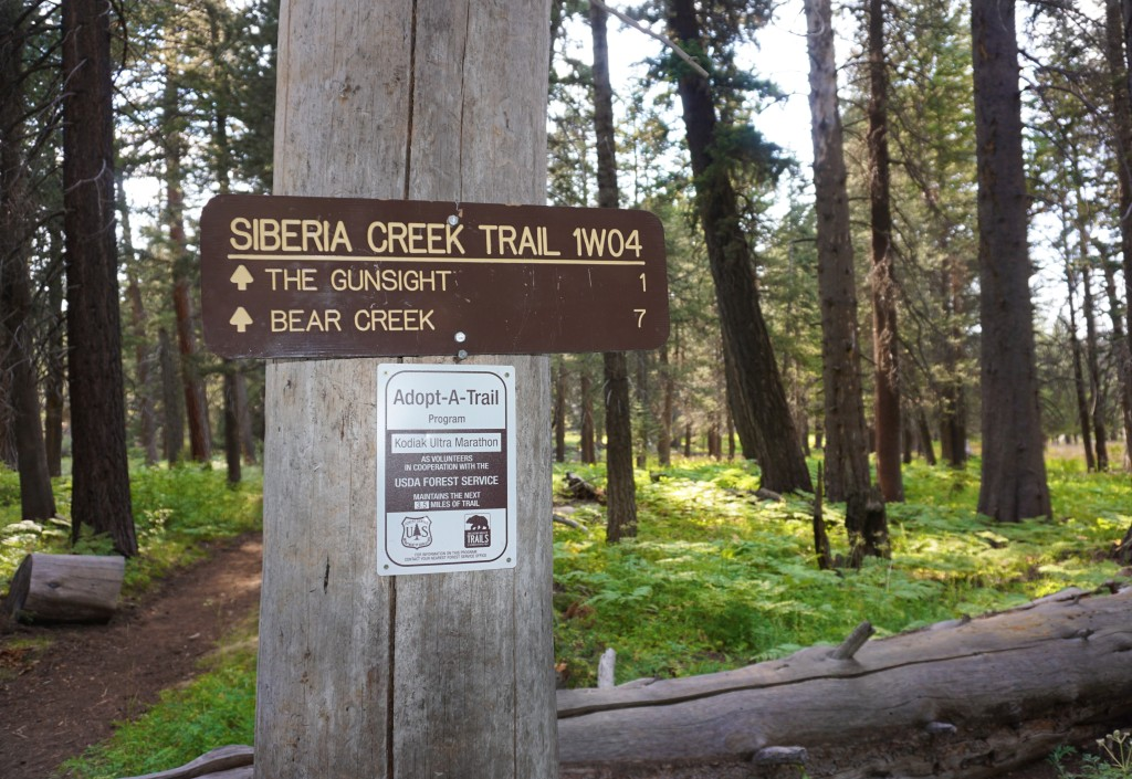 DeziStyle Siberia Creek Trail