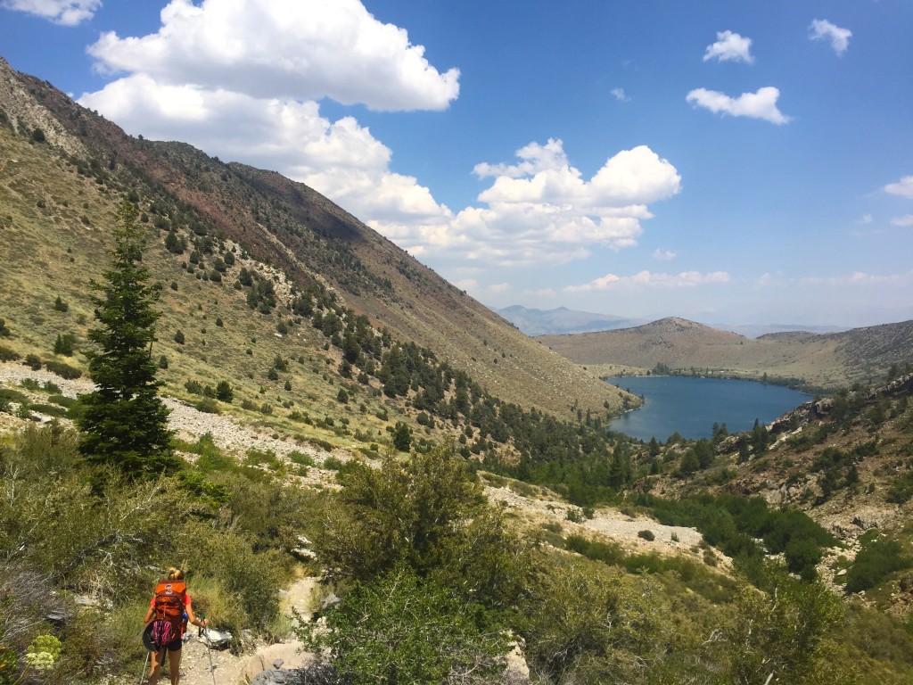 DeziStyle Mammoth Lakes
