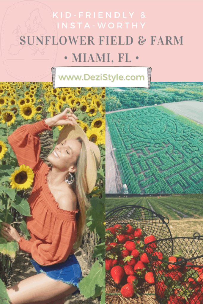 DeziStyle Travel & Adventure blog - The Berry Farms - Pinterest